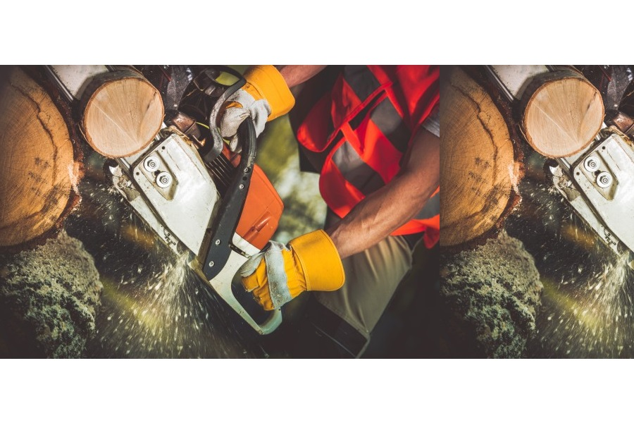 Tree Services Business for Sale Brisbane in Queensland