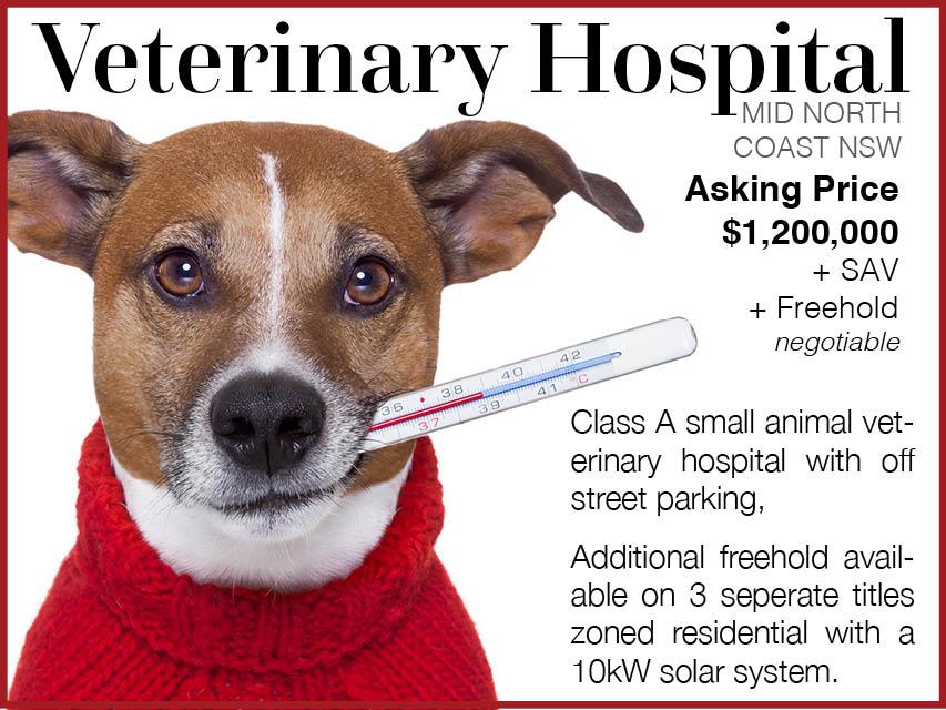 68/050 Successful Veterinary Hospital