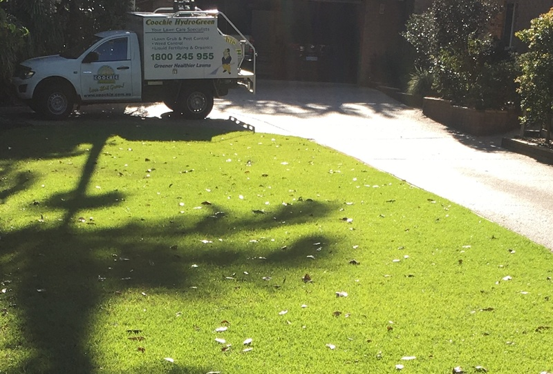 ess022-lawn-services-lifestyle-business-with-solid-income-on-the-beautiful-sun-2