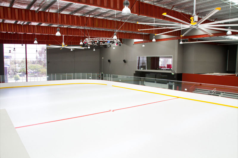 18122 Iconic Skating Rink
