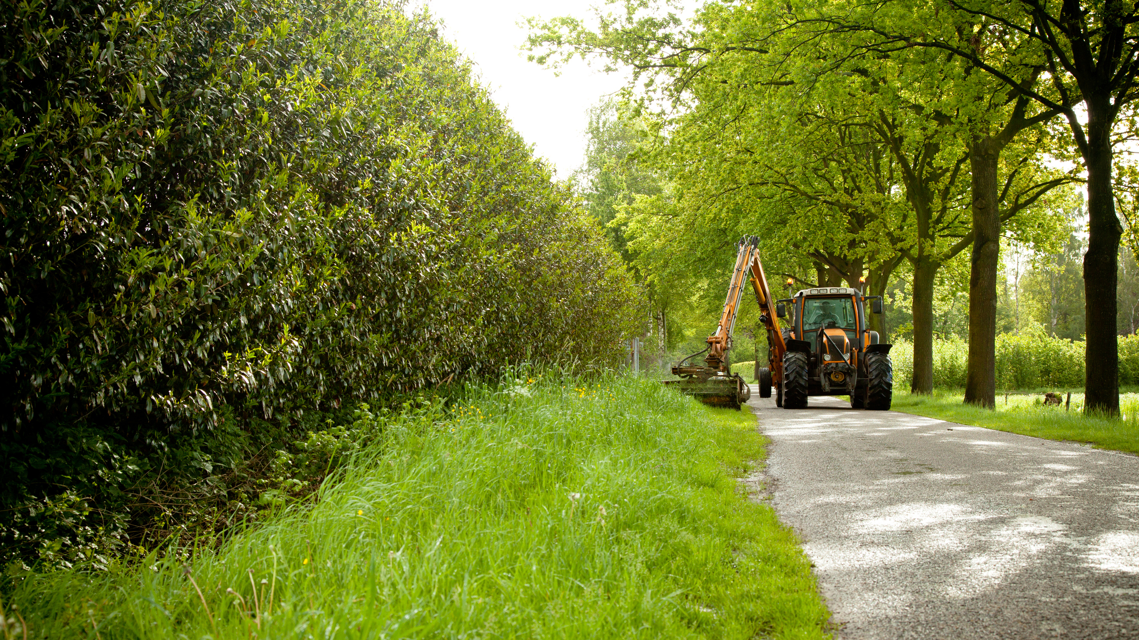 Vegetation Management Government Contracts