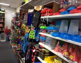 Discount Variety Store For Sale