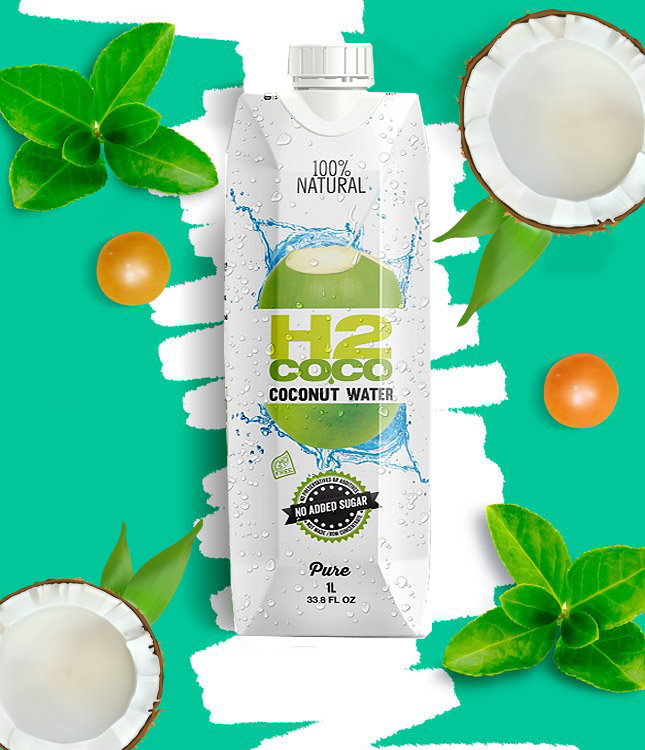 Online Coconut Health Products Business