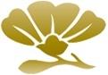 Absolute Cosmetic Medispa Logo