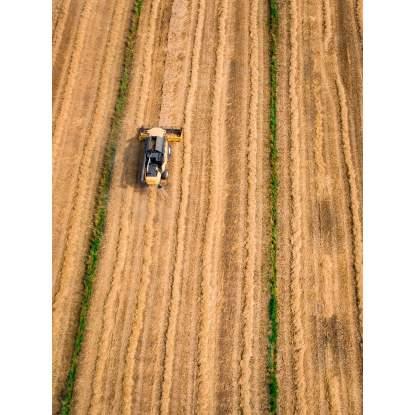 Land Vegetation Management Business Providing Labour/Machine Hire