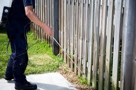 leading-pest-management-from-24-950-best-value-in-australia-2