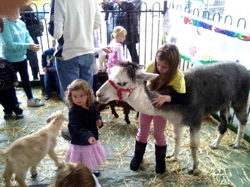Mobile Petting Zoo REFZ2209