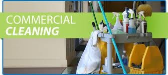 Cleaning business for sale-Armadlea, Perth, Success, Bibralake