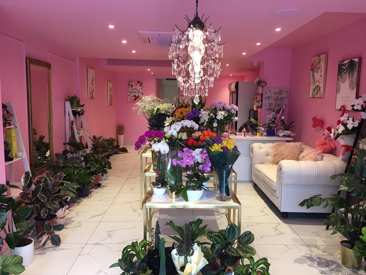 Florist Business For Sale South Yarra