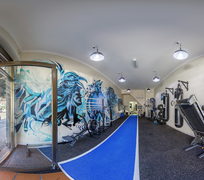 Busy and well established personal training studio in Redfern Sydney CBD