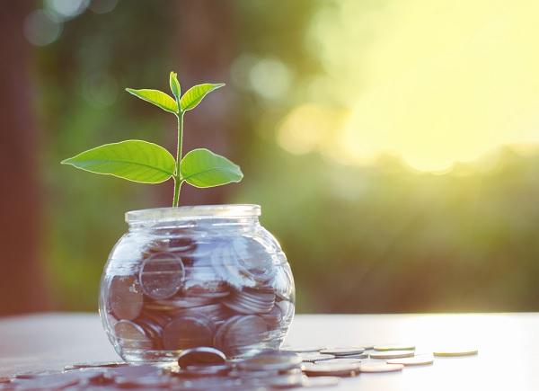 Financial Services Business - Brick & Mortar