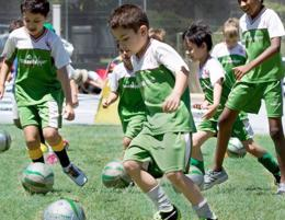 GRASSHOPPER SOCCER KIDS COACHING (EXISTING FRANCHISE READY TO GO)