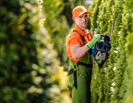 20264 Successful Hedge Trimming Business
