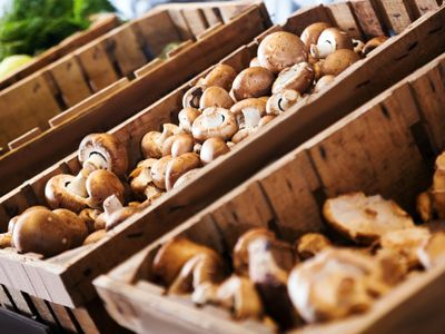 21165-profitable-fresh-produce-farm-and-wholesaler-1