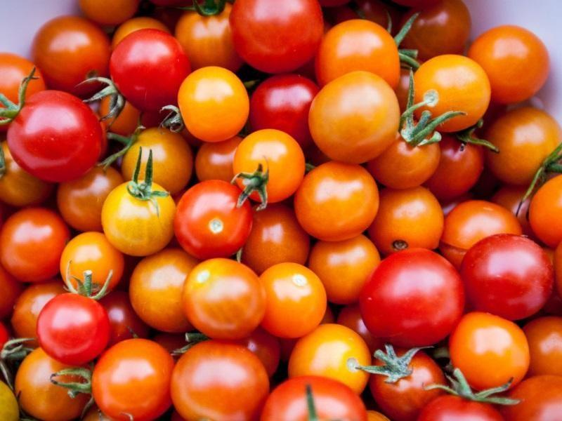 fruit-amp-veg-499-000-14873-1