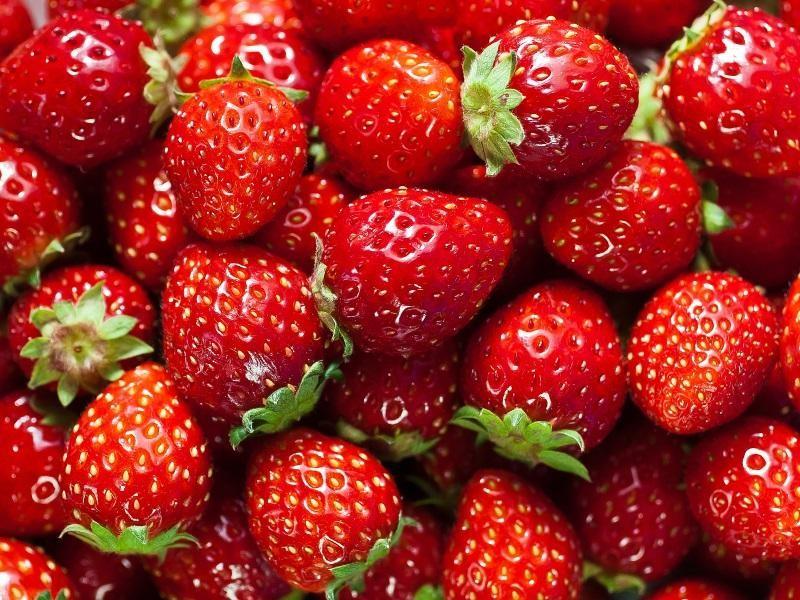 fruit-amp-veg-499-000-14873-3