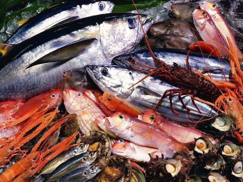 FRESH FISH $50,000 (14457)