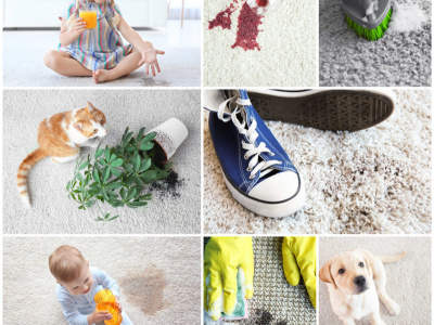 elite-carpet-and-upholstery-dry-cleaning-franchise-warwick-qld-9