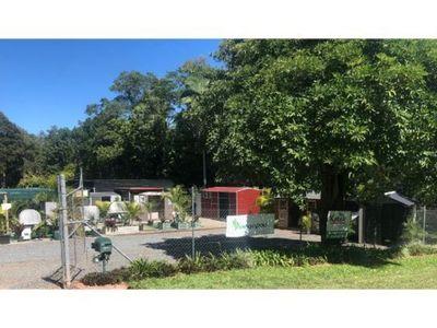 freehold-shedland-garden-centre-and-residence-redlands-coast-shire-3