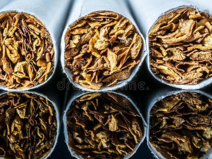 long-established-tobacconist-port-stephens-nsw-0