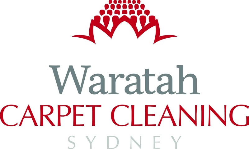 Carpet & Upholstery Cleaning Business  Sydney