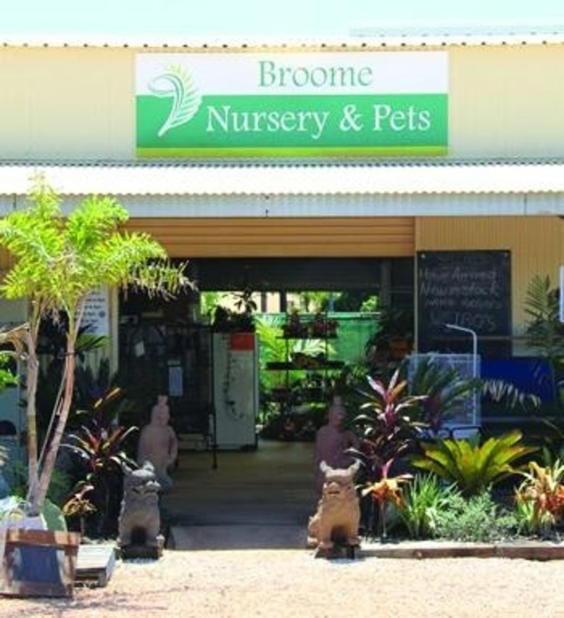 Established and Very Busy Nursery & Pet Supplier - Broome, WA