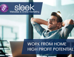 High Earning Potential. Work From Home Online. No Technical Skills Needed