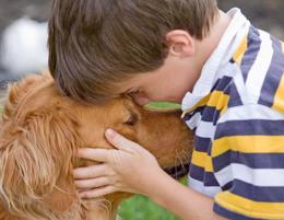 Pet Cremation – Water Cremation for Pets –www.ecofriendlypetcremations.com.au