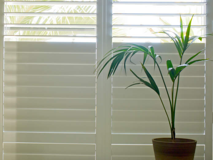 blind-shutter-and-awning-business-be-your-own-boss-0