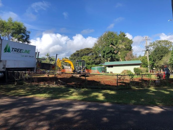 tree-removal-business-for-sale-4