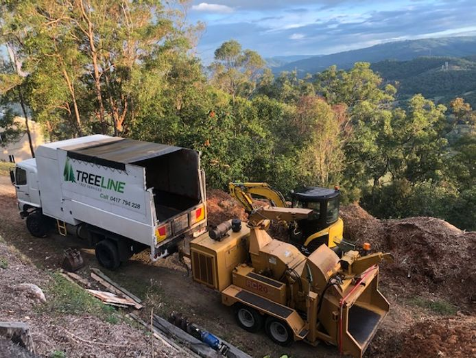 tree-removal-business-for-sale-2