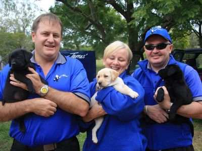 pet-grooming-business-james-home-services-australia-4