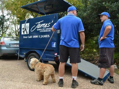 love-dogs-want-to-work-for-yourself-pet-dog-grooming-mobile-franchise-1