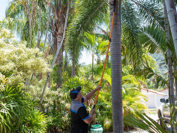 get-paid-to-spend-your-days-outdoors-lawn-mowing-garden-care-franchise-4