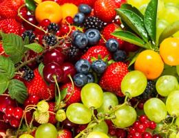 Organic Fruit shop for sale