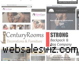 Online eCommerce Dropshipping Store Website, Work from Home & Sell on Site Today
