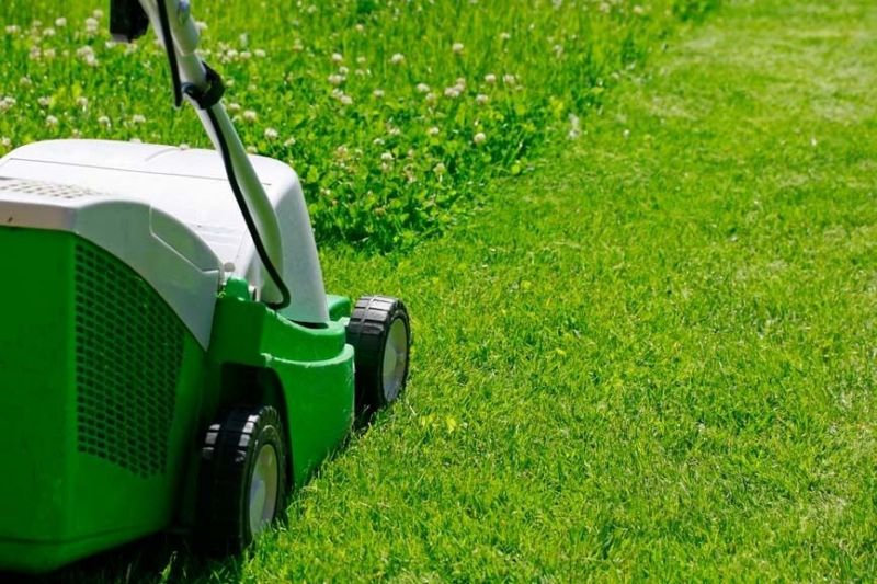 Be your own boss, easy to run garden maintenance business