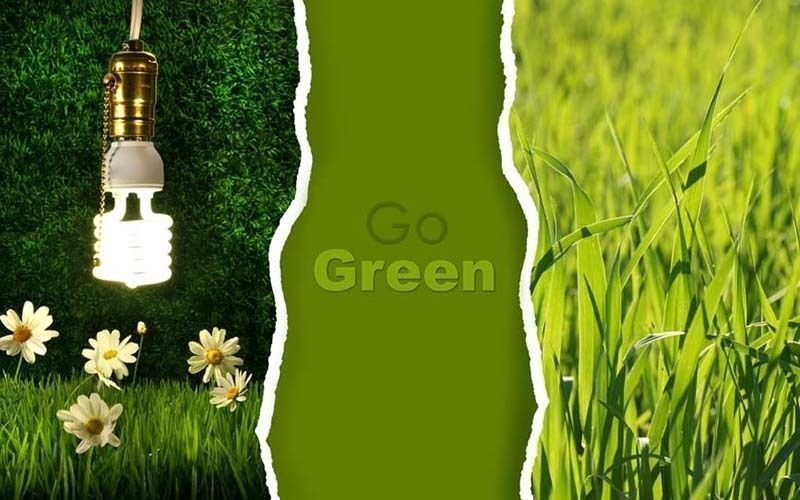 Online Distribution Business - Eco friendly Timber Oils & Varnishes.
