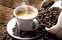 Ref: 1741, Espresso / Cafe, East Sydney
