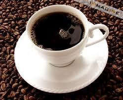 Stylish Cafe - Ref: 16306