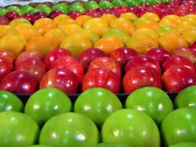 fruit-and-veg-near-mordialloc-ref-15426-1
