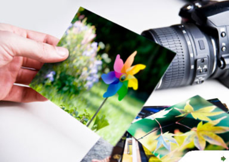 Professional Photography Business In Melbournes North - Ref: 14129