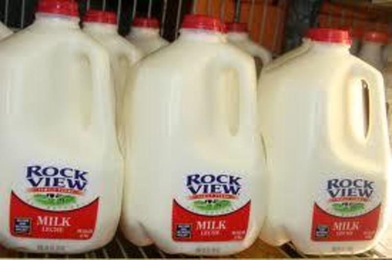 Milk Bar/Convenience Store Near Frankston - Ref: 12212