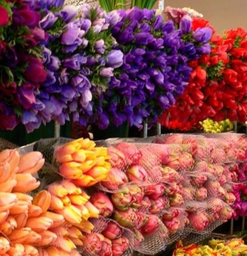 florist-near-oakleigh-ref-11025-2