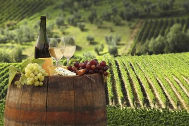 Vineyard*Taking $340,000+pa*Avoca area*Est'd since 1998*20.5 Acres*Huge opportun