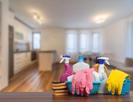 Domestic Cleaning Business
