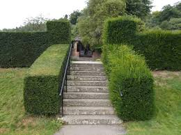 hedge-trimming-business-with-a-strong-clientele-base-2