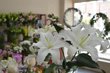 Established Florist Business For Sale, Malvern East
